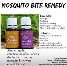 A little recipe I put together for some really bad mosquito bites. Had to share!