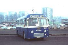 Bluebird Buses, Bus Coach, Coaches, Trucks, Cars, Modern, Vintage, Trainers, Trendy Tree