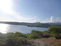 land for sale in Grenada by Touched Reality Real Estate Services