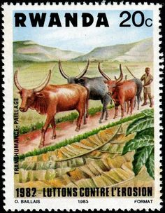 Herd of Cattle? Bulls, Cows and Calves on Stamps - Stamp Community Forum - Page 11