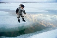 It details the relation Inuit culture has with the Environment, and how it affects them. Description from cctourism.wordpress.com. I searched for this on bing.com/images