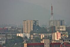 CHIHUAHUA (Mexico City, Mexico)