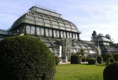 serre aux palmiers à Vienne - Blog Voyage Trace Ta Route http://www.trace-ta-route.com/bienvenue-vienne-la-ville-des-palais-des-vignes/ #TraceTaRoute #Vienne #Autriche www.trace-ta-route.com
