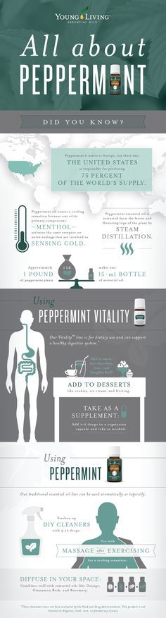 Young Living Peppermint Essential Oil and Peppermint Vitality Essential Oil   WWW.THESAVVYOILER.COM