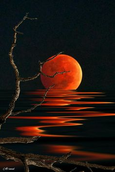 Red Moon Reflections 😍😎😄 Via; - Sue Brimhall Red Moon Reflections 😍😎😄 Via; Moon Painting, Painting & Drawing, Kiss Painting, Red Moon, Orange Moon, Pastel Art, Moon Art, Painting Techniques, Painting Inspiration