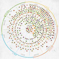 Kalendarz sezonowości