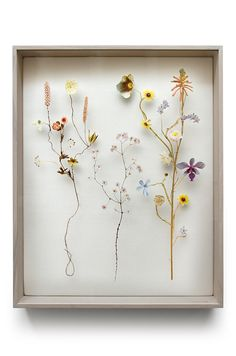 """We have to thank Aunt Peaches for introducing us to the magic that is Anne Ten Donkelaar's series of """"Flower Constructions,"""" made with a combination of photographs of flowers along with dried and. Real Flowers, Dried Flowers, Paper Flowers, Flower Collage, Flower Frame, Aunt Peaches, Pressed Flower Art, House Drawing, How To Preserve Flowers"""