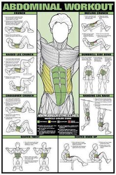 AB / Abdominal Workout Chart - Healthy Fitness Training Sixpack Abs - Yeah We Workout !