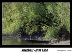 Digital Postcard Photo WILDERNESS RIVER RHINE  Canoe Riverboat