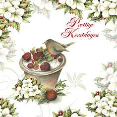 Prettige Kerstdagen roodborstje appels, verkrijgbaar bij #kaartje2go voor €