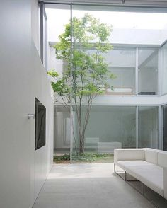 Via thehardt S House (2011) by Shinici Ogawa & Associates located in Tokyo, Japan. Within a calm residential area in Tokyo, this house has two contrasting faces; an intimate introverted, closed house with courtyard and an outward looking, open glasshouse above. #japan #japanese #courtyard #glass #tree #plants