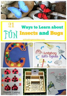 Want a fun way to learn about insects and bugs? These 21 activities will keep you busy learning for a long time! Want a fun way to learn about insects and bugs? These 21 activities will keep you busy learning for a long time! Science Activities For Kids, Preschool Science, Preschool Crafts, Preschool Activities, Insect Activities, Teaching Science, Science Experiments, Teaching Ideas, Nature Activities