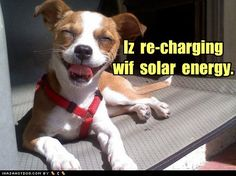 groene energie.