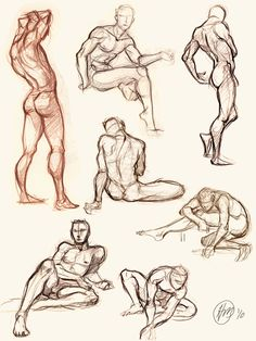 Figure Sketches by Holly Gesture Drawing, Body Drawing, Anatomy Drawing, Drawing Skills, Drawing Poses, Drawing Lessons, Drawing Techniques, Life Drawing, Male Figure Drawing