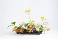 https://www.facebook.com/OharaSchool.Ikebana.International/?fref=ts