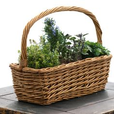 went to goodwill and got some cheap wicker baskets for some of my herbs as well as for my indoor starts.  Cheap, easy, and adorable!  Totally recommend it:)