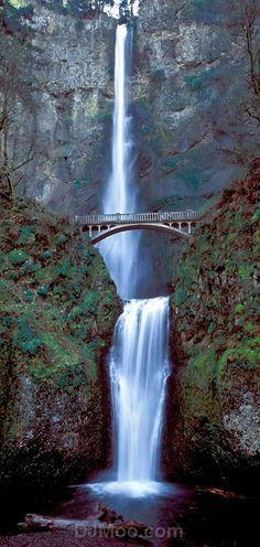 ♥ Multnomah Falls  Columbia Gorge, Oregon