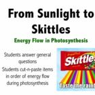 Looking to sweeten your photosynthesis unit? In this 4 page activity students cut-n-paste pictures in order of energy flow and answer general quest. Science Resources, Science Lessons, Teaching Science, Science Education, Life Science, Science Ideas, Teaching Ideas, Third Grade Science, Middle School Science
