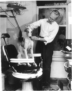 Lady Greyhound at the barber. Lady Greyhound was a marketing mascot of the US Greyhound Lines bus company in the 1950s.