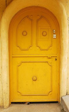 Wide Yellow Door w/ a doggie nose peepin' out!