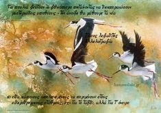 Τετράδια της Αμπάς: Τάσος Λειβαδίτης — Αλληλογραφία «Τα πουλιά φεύγουν...