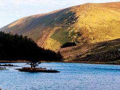 Scenic Photography, Mount Rainier, Mountains, Water, Travel, Outdoor, Water Water, Aqua, Viajes