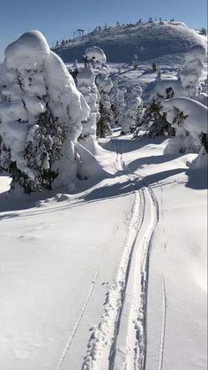 Winter Szenen, Italy Winter, Ski Italy, Italy Travel, Alaska Winter, New York Winter, Winter Cabin, Winter Travel, Ski Europe