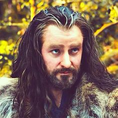 I feel like Mother had a name for this face...but it escapes me....-Fili <- I'm thinking half apologetic and half majestic (but he's always majestic).