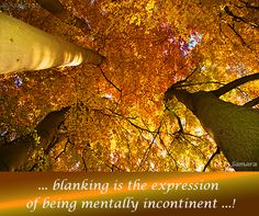 ... #blanking is the expression of being mentally incontinent ...!