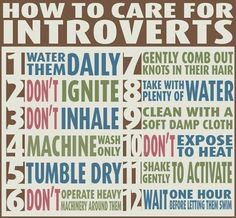 How to care for introverts.