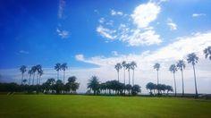青島  最高な景色