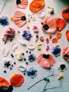 Multi Flower