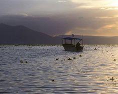 Lago de Chapala  Jalisco  Foto por: @andy_marley_  #Guadalajara #enguadalajara #gdl #gdlmx #jalisco #tapatio #igersguadalajara #everydayguadalajara #everydaymexico #igersmexico #mextagram #mexicanoscreativos #talentosmex #Chapala #lago #naturaleza #naturelovers #beautiful #beauty #bonito #clouds #cloudporn #skyporn #boat #sun #dusk #viajar travel #vscogdl #vscocam #liveauthentic