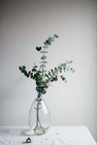 Dienstagsdinge: Interior Likes KW 50 - Journelles - Dienstagsdinge: Interieur mag KW 50 - Vases Decor, Plant Decor, Design Wood, Deco Floral, Deco Table, Flower Vases, Vase For Flowers, Paper Flowers, Dried Flowers