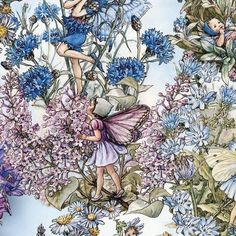 FLOWER FAIRY Cicely Mary Barker Periwinkle Fabric