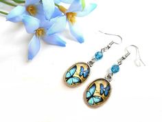 d973ce6d531f0 Boucles d oreilles cabochon ovale avec des papillons bleus et une perle en  cristal Swarovski