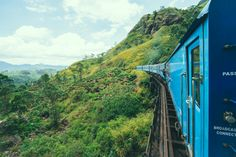 Royal Tea Trail. Sri Lanka