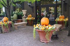 Detroit Garden Works - Fall planters