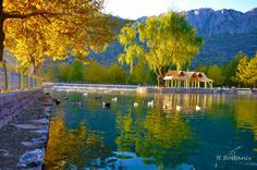 Konya Seydişehir-Kuğulu Park