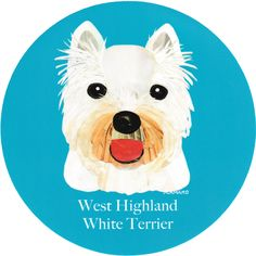 マイ @Behance プロジェクトを見る : 「012 | West Highland White Terrier」 https://www.behance.net/gallery/42194799/012-West-Highland-White-Terrier