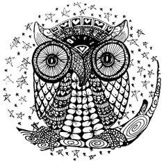 Li Bode: Starry Night Owl
