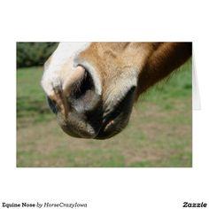 Equine Nose Card