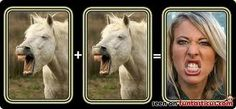 Horsing around.neigh they're not! Personality, Faces, Horses, The Face, Horse, Face