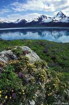 Slate Island, Kenai Fjords National Park, Alaska