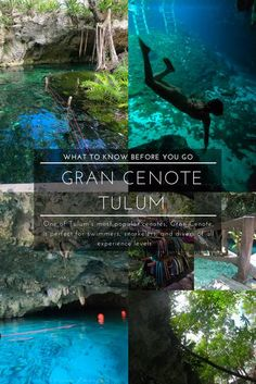 Everything You Need to Know Before Visiting Gran Cenote, Tulum, Quintana Roo, Mexico Mexico Vacation, Mexico Travel, Belize Travel, Travel Advice, Travel Guides, Travel Articles, Travel Photos, Travel Tips, Riviera Maya