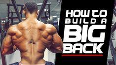 HOW TO BUILD A BIG BACK - Simeon Panda & Andrew Grossett - YouTube
