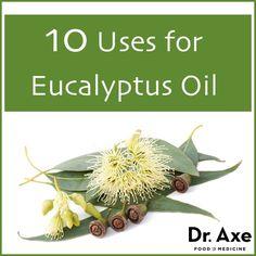 Top 10 Eucalyptus Oil Uses and Benefits - DrAxe.com  http://www.draxe.com #essentialoils #benefits #uses #howto #eucalyptus