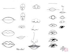 Draw Face Parts by *Diana-Huang on deviantART