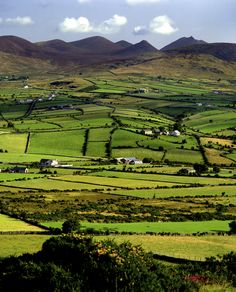 Patchwork fields of the County Down countryside, Northern Ireland.