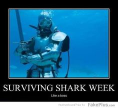 surviving shark week